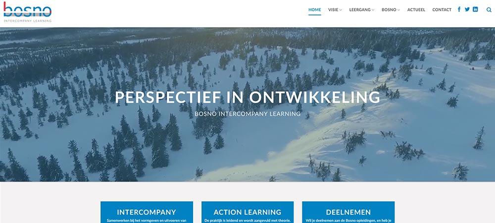 Webdesign-bosno