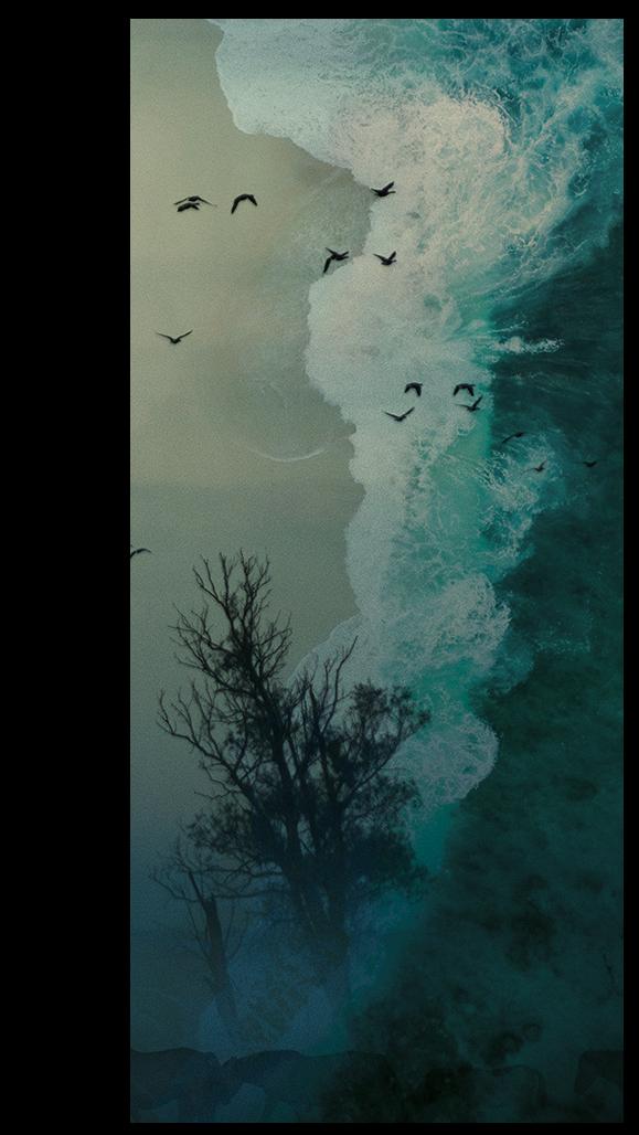 Artwork-Triggermind-standing